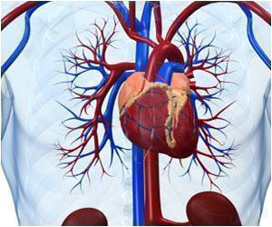 Research Finds Molecule That can Increase Blood Flow in Vascular Disease