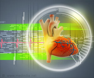 Novel 3-D Heart to Help Improve Cardiac Treatment