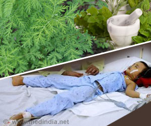 New Herbal Remedy to Fight Malaria