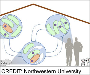Bacteria Present in House Dust Can Spread Antibiotic Resistance