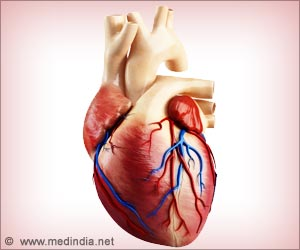 New Supercomputers Almost Capture the Behavior of Normal Human Heart Valve