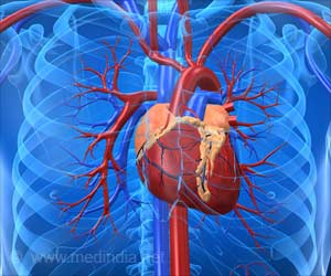 Molecular Nets Inside Heart Muscles Hold Promise for New Heart Failure Treatment