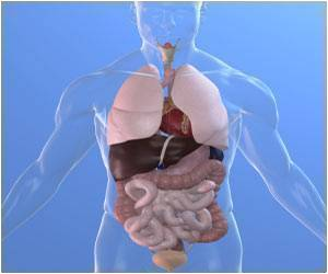 Biomedical Discoveries With See-Through Organs and Bodies