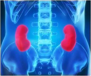 Relation Between Kidney Damage and High Blood Pressure