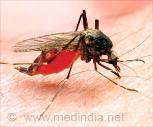 Antimalarial Drugs: New Breakthrough Finding
