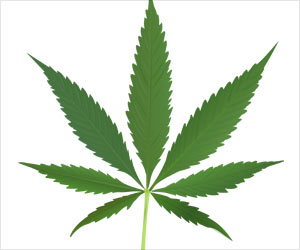 Prenatal Cannabis Exposure May Lead to Brain Abnormalities in Offspring