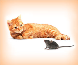 Researchers Identify Gene That Makes Mice Avoid Cats