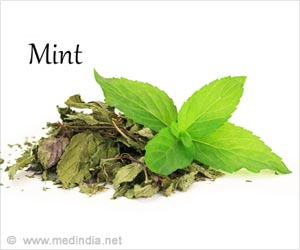 Enjoy Benefits of Pudina/Mint Leaves