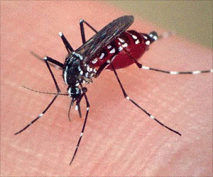 Chances of Malaria Infection Depends on Number of Parasites