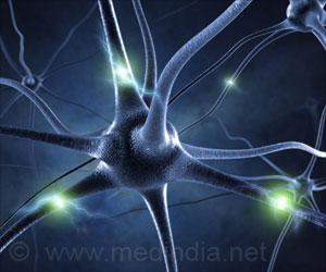 Merlin Protein Could Repair Peripheral Nerve Damage