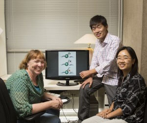 New Target to Help Fight HIV Identified