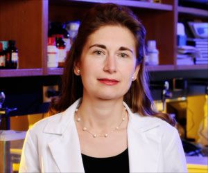 UAB to Conduct Human Clinical Trial of Drug That Reversed Diabetes in Mice