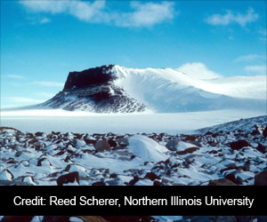 Tiny Frozen Fossils Reveals the Antarctic Mystery