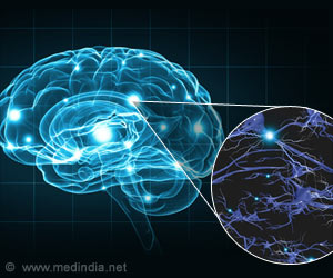 New Link between Gene Mutation and Brain Function in Huntington's Disease Found