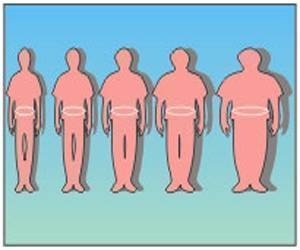 Perelman Researchers Say BMI is Not an Accurate Measure of Body Fat Content