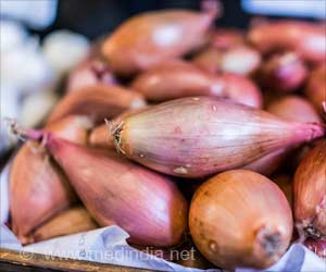 Onion Extract may Help Develop New Drugs to Fight Drug-resistant TB