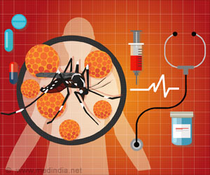 Antibodies of Any Zika Virus Strain can Offer Protection Against Other Strains