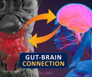 Gut-brain Connection Explains How Overeating Causes Weight Gain