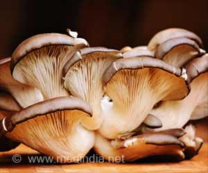 Sun-Exposed Oyster Mushrooms Aid in Tuberculosis Treatment