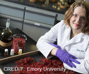 Peppertree Extract Fights Antibiotic-Resistant Bacteria