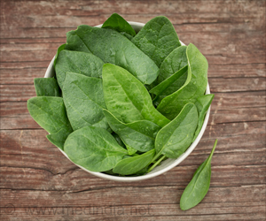 Pre-vascularized Scaffolds From Spinach Leaves Can Grow Human Tissue