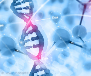 Gene BRCA1 Plays An Important Role In DNA Repair