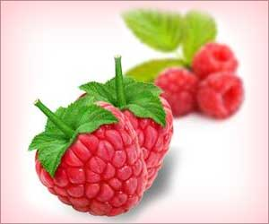 Eating Red Raspberries can Promote Short-term Blood Vessel Function