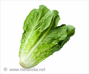 Protein Drug in Lettuce Helps Treat Pulmonary Arterial Hypertension