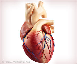 Controlling Cardiac Scarring Could Help Regeneration of Injured Heart Tissue