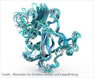 Hepatitis C Virus Vaccine Design - Scientists Reveal Difficulties