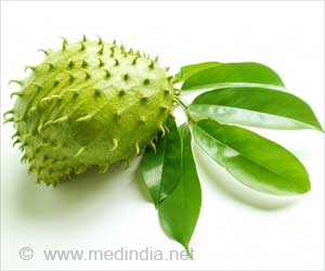 Soursop Leaf Extract Can Prevent Fibromyalgia Symptoms