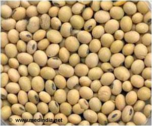 Soybean Intake Cuts Cancer Risk