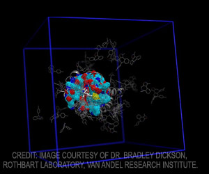 Artificial Intelligence for Drug Discovery and Biomarker Development