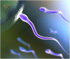 New Structure Spotted in Human Sperm Tails