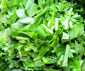 Pre-cut Greens Salad may Promote Growth of Salmonella Bacteria
