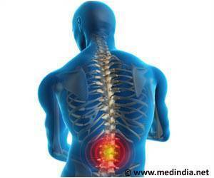 Protein Concentrate can Reduce Spinal Cord Damage: University of Vienna