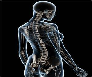 New Finding may Aid Recovery from Spinal Cord Injury