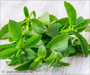 Alternate Sugar Source Stevia Can Help Indians Cut Down Sugar, Calories