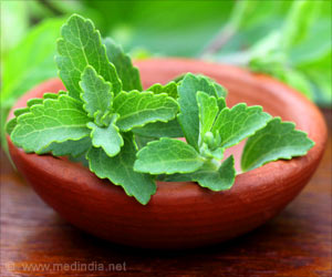 Secret Behind Stevia's Blood Glucose Lowering Effect
