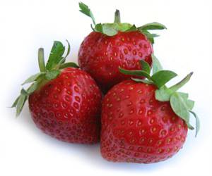Strawberry Extract Acts as a Protector Against Ultraviolet Radiation