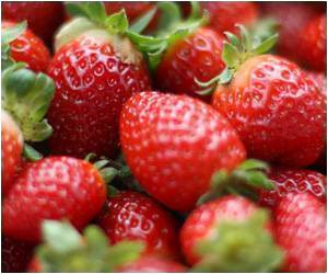 Eating Strawberries Lowers Bad Cholesterol, Triglycerides