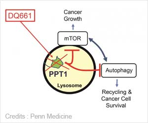 New Target to Treat Cancer Identified and a New Drug Developed