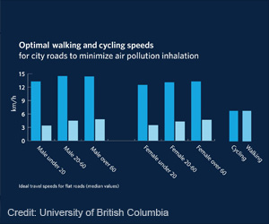 Optimal Walking And Cycling Speeds Identified To Minimize Effects Of Air Pollution