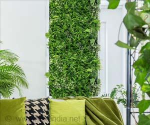 Simple Indoor Vertical Garden Ideas to Decorate Your Home This Festival Season