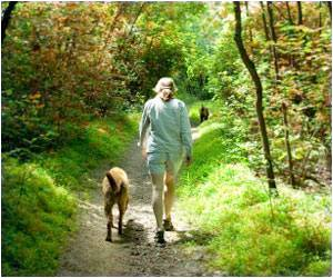 A Gentle Stroll for Just Half an Hour Daily Can Cut Early Death Risk
