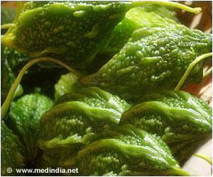 Wild Bitter Gourd Benefits People With Metabolic Syndrome