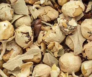 Indian Herbal Extract Has Anti-diabetic Properties