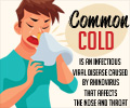 Infographics on Common Cold