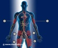 Infographics on Insulin Injections for Diabetes
