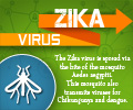 Infographics on Zika Virus
